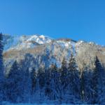 wstag_eisstock_feb19 (1)