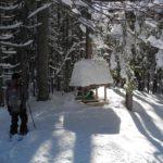 wstag_schneeschuh_feb19 (4)